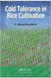 Cold Tolerance in Rice Cultivation