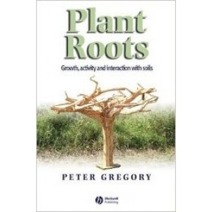 Plant Roots: Growth Activity and interaction with Soils